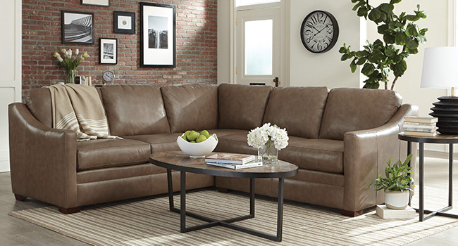 Living Room Sectional with coffee table