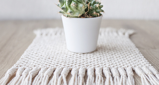 White Twilled Rug Placemat and southwestern plant in white pot