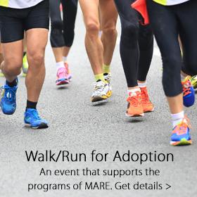 Walk for Adoption - Jordan's Furniture