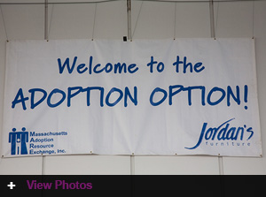 2013 Adoption Option at Jordan's Furniture