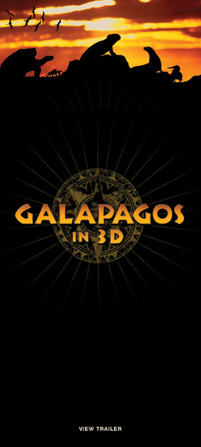 Galapagos in IMAX 3D at Jordan's Furniture in Natick and Reading