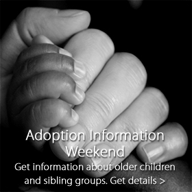 Adoption Information Weekend at Jordan's Furniture stores in MA, NH and RI