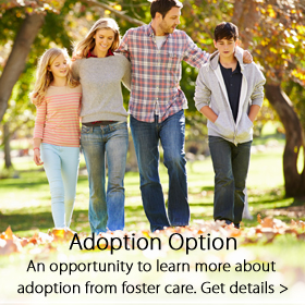 Adoption Option - Jordan's Furniture
