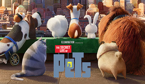 Secret Life of Pets in IMAX 3D at Jordan's Furniture in Reading, MA